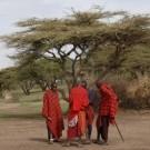 Il cammino degli ADR in Tanzania e a Zanzibar
